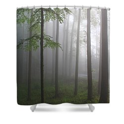 Sunrise Fog Shower Curtain