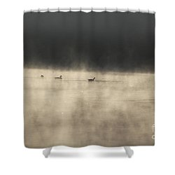 Sunrise Geese Shower Curtain