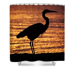 Shower Curtain featuring the photograph Sunrise Heron by Leticia Latocki