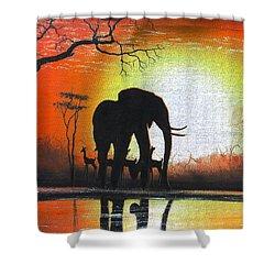 Sunrise In Africa Shower Curtain