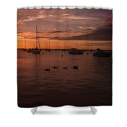 Sunrise Over Lake Michigan Shower Curtain by Miguel Winterpacht
