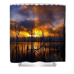 Sunrise Shower Curtain by Raymond Salani III