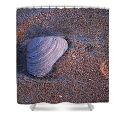 Sunrise Shell Shower Curtain