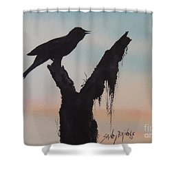 Sunrise Singer Shower Curtain