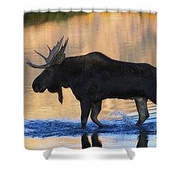 Sunrise Stroll Shower Curtain