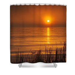 Sunrise Through The Fog Shower Curtain by Scott Norris