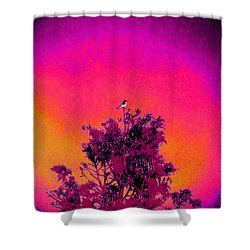 Sunrise To Sunset Nature Is Beautiful Shower Curtain