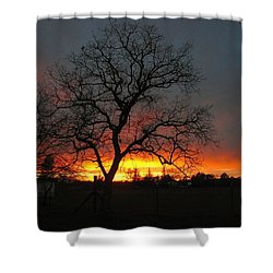 Sunset 02 18 13 Shower Curtain by Joyce Dickens