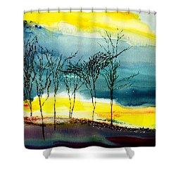 Sunset 3 Shower Curtain by Anil Nene