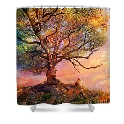 Sunset At Fox Mountain Shower Curtain by Aimee Stewart