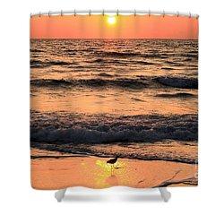 Sunset At St. Joseph Shower Curtain by Adam Jewell