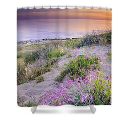 Sunset At The Beach  Flowers On The Sand Shower Curtain by Guido Montanes Castillo