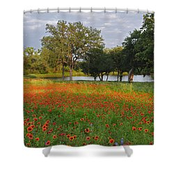 Sunset At The Pond Shower Curtain by Lynn Bauer