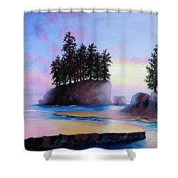 Sunset At Tongue Point Shower Curtain by Shelley Irish