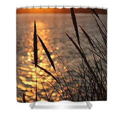 Shower Curtain featuring the photograph Sunset Beach by Athena Mckinzie