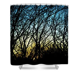 Sunset Behind Trees Shower Curtain