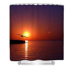 Sunset Blue Shower Curtain by Beverly Stapleton
