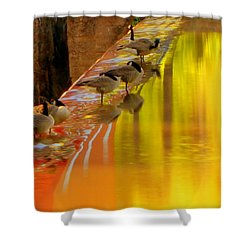 Sunset Club Shower Curtain