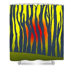 Shower Curtain featuring the photograph Sunset Deep In The Forest by Haleh Mahbod