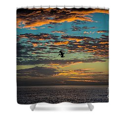 Sunset Dive Shower Curtain