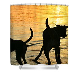 Sunset Dogs  Shower Curtain by Laura Fasulo