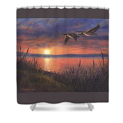 Sunset Flight Shower Curtain