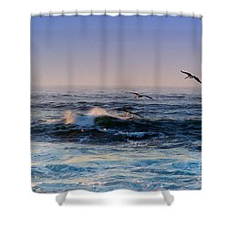 Shower Curtain featuring the photograph Sunset Fly by Kathy Bassett