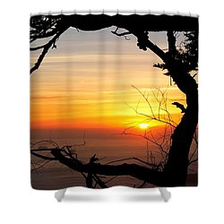 Sunset In A Tree Frame Shower Curtain