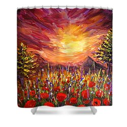 Sunset In Poppy Valley  Shower Curtain by Lilia D