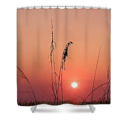 Sunset In Tall Grass Shower Curtain by Bill Cannon
