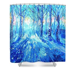 Sunset In A Winter Wood  Shower Curtain