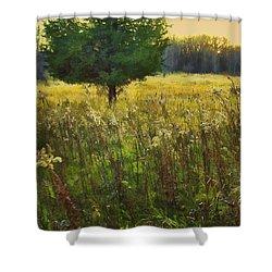Shower Curtain featuring the photograph Sunset Meadow by John Hansen