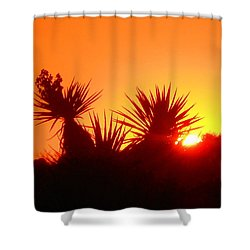 Sunset Near Castle Rock Shower Curtain