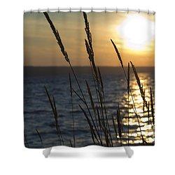 Sunset On Cayuga Lake Shower Curtain