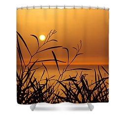 Sunset On Leaves  Shower Curtain by Carlos Caetano