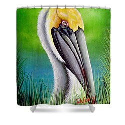 Sunset Pelican Shower Curtain