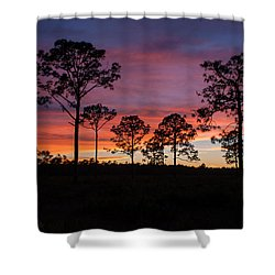 Shower Curtain featuring the photograph Sunset Pines by Paul Rebmann