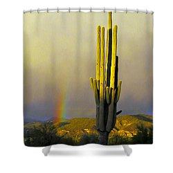 Shower Curtain featuring the photograph Sunset Rainbow Cactus by John Haldane