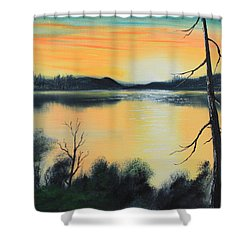 Sunset Shower Curtain by Remegio Onia