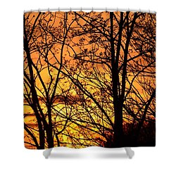 Shower Curtain featuring the photograph Sunset Silhouettes Behind The George Washington Masonic Memorial by Jeff at JSJ Photography
