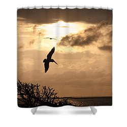 Sunset Soaring Shower Curtain