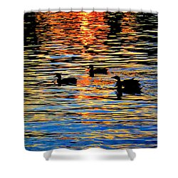 Sunset Swim Shower Curtain by Robyn King