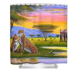 Sunset Watch Shower Curtain