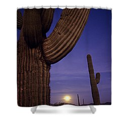 Sunset With Moonise Behind Saguaro Cactus In Desert Southwest Ar Shower Curtain