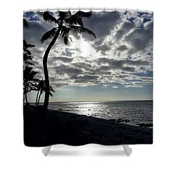Sunset With Palm Trees Shower Curtain by Pamela Walton