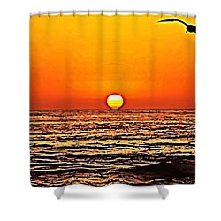Sunset With Seagull Shower Curtain by Sharon Soberon