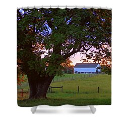 Sunset With Tree Shower Curtain