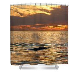 Sunset Wonder Shower Curtain