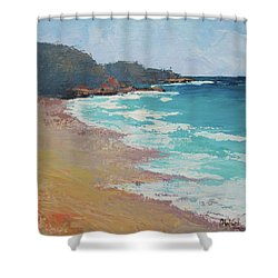 Shower Curtain featuring the painting Sunshine Beach And Lions Head Noosa Heads Queensland by Chris Hobel