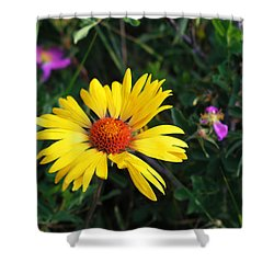 Sunshine Shower Curtain by Craig T Burgwardt